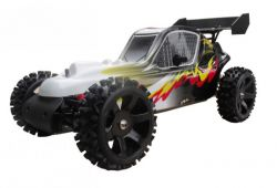 Buggy RH 501 Standartversion